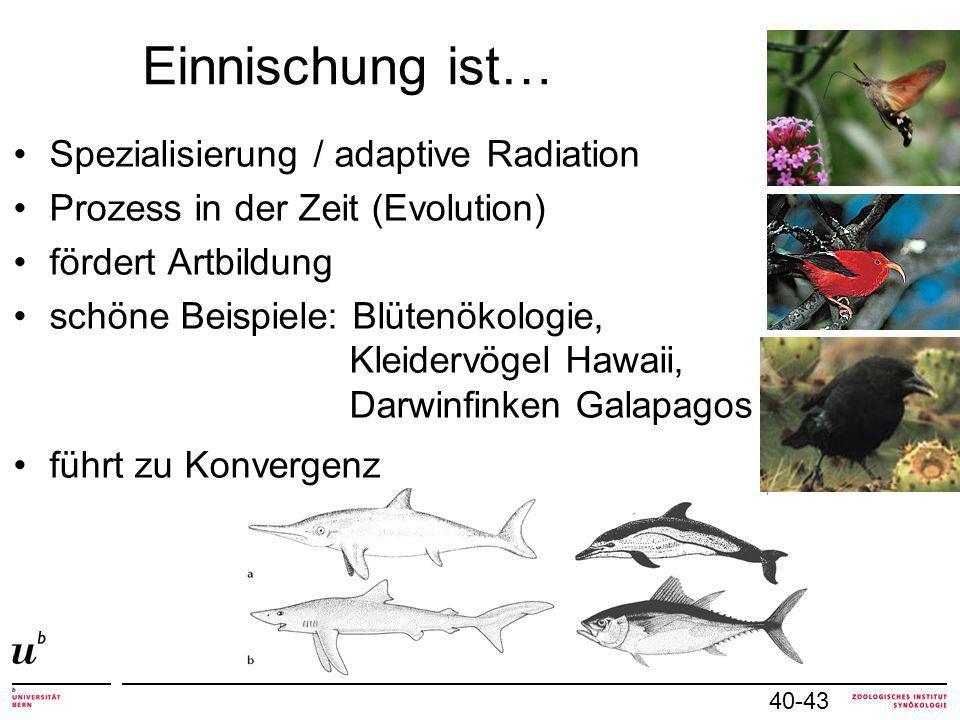 Einnischung ist… 40-43 Spezialisierung / adaptive Radiation Prozess in der Zeit (Evolution) fördert Artbildung schöne Beispiele: Blütenökologie, Kleidervögel Hawaii, Darwinfinken Galapagos führt zu Konvergenz