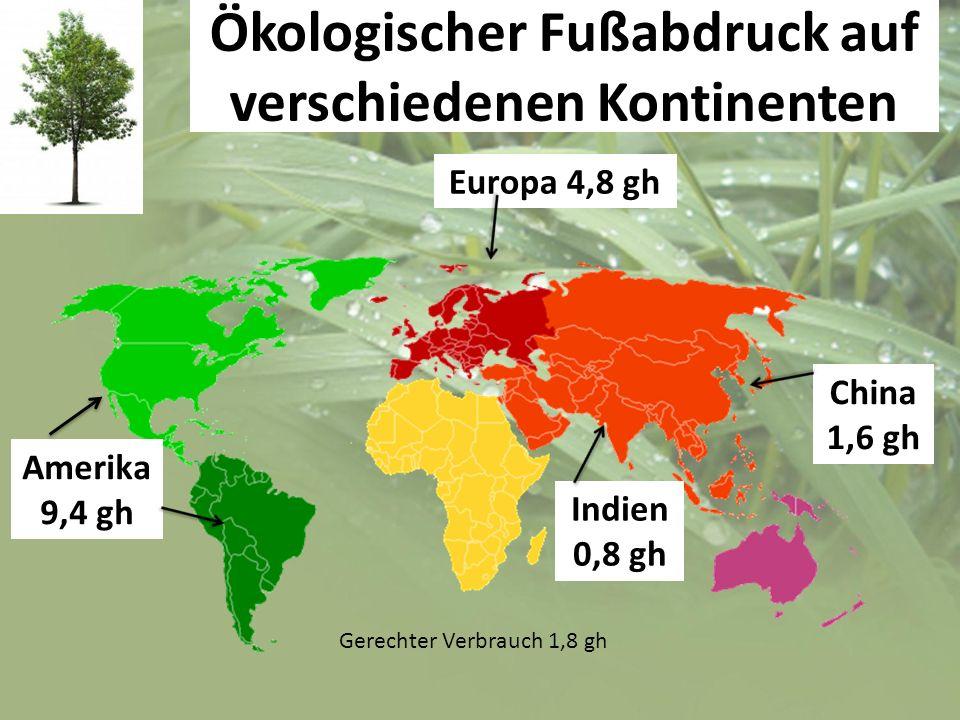 Ökologischer Fußabdruck auf verschiedenen Kontinenten Amerika 9,4 gh Europa 4,8 gh China 1,6 gh Indien 0,8 gh Gerechter Verbrauch 1,8 gh