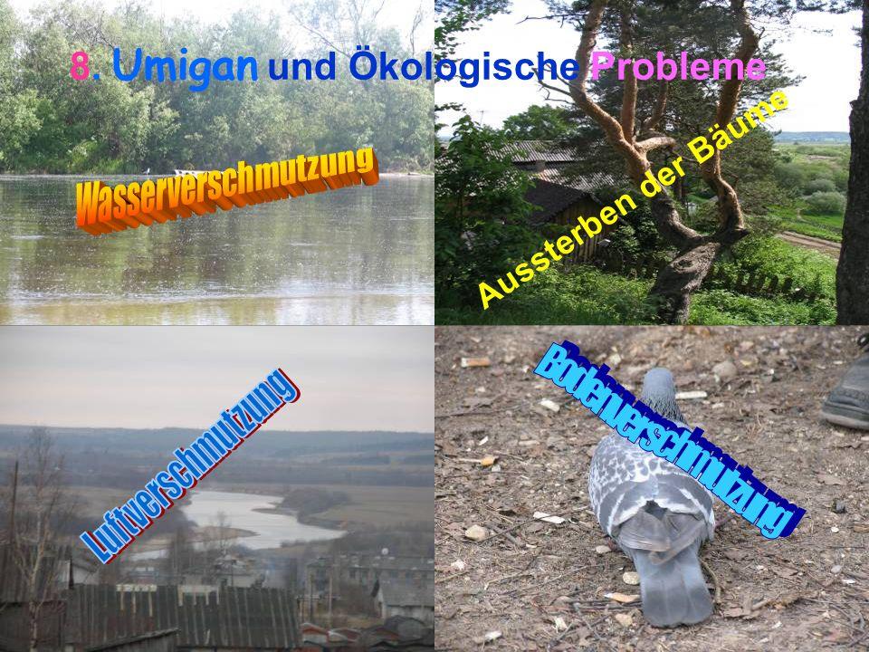 8. Umigan und Ökologische Probleme Aussterben der Bäume
