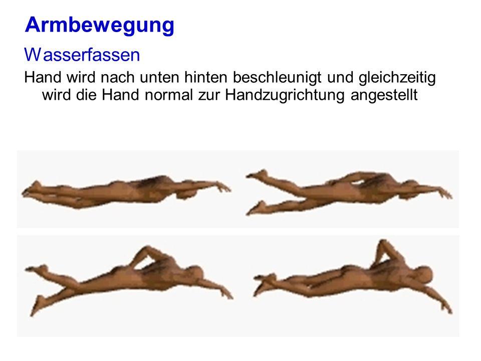 Armbewegung Wasserfassen Hand wird nach unten hinten beschleunigt und gleichzeitig wird die Hand normal zur Handzugrichtung angestellt