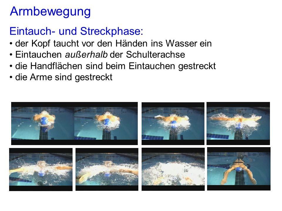 Armbewegung Eintauch- und Streckphase: der Kopf taucht vor den Händen ins Wasser ein Eintauchen außerhalb der Schulterachse die Handflächen sind beim