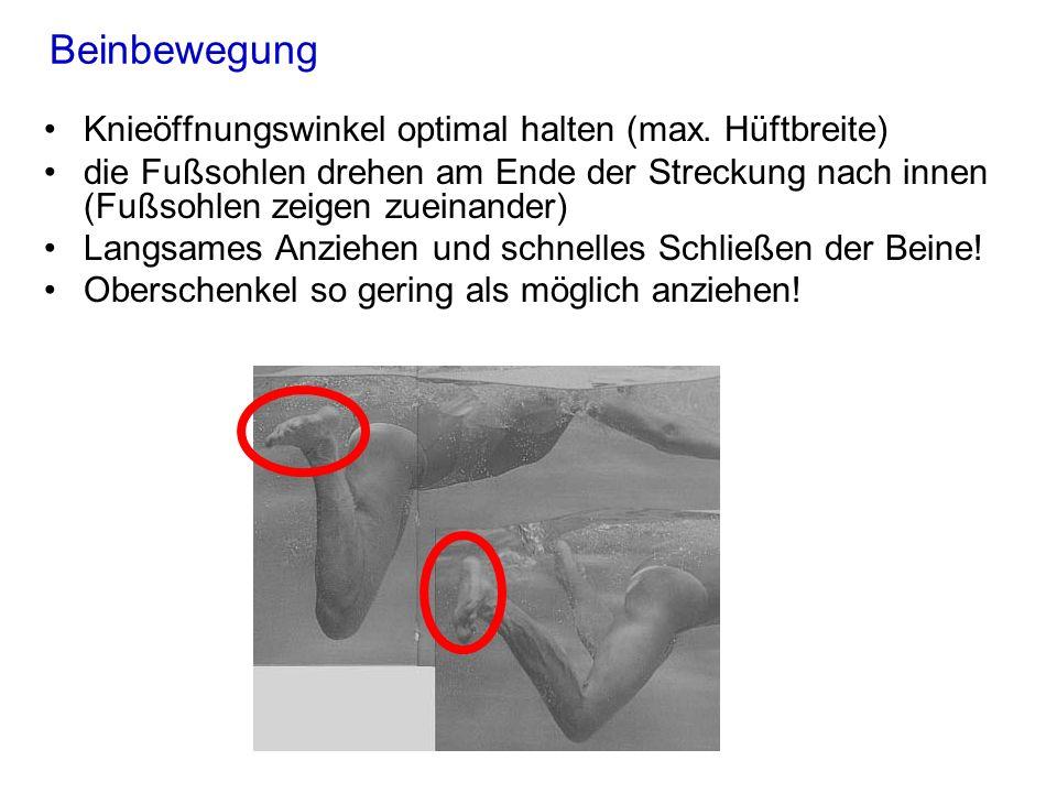 Beinbewegung Knieöffnungswinkel optimal halten (max. Hüftbreite) die Fußsohlen drehen am Ende der Streckung nach innen (Fußsohlen zeigen zueinander) L