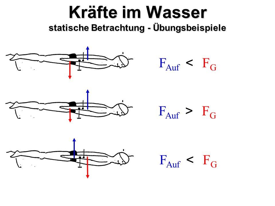 Kräfte im Wasser statische Betrachtung - Übungsbeispiele F Auf FGFG < FGFG > FGFG <