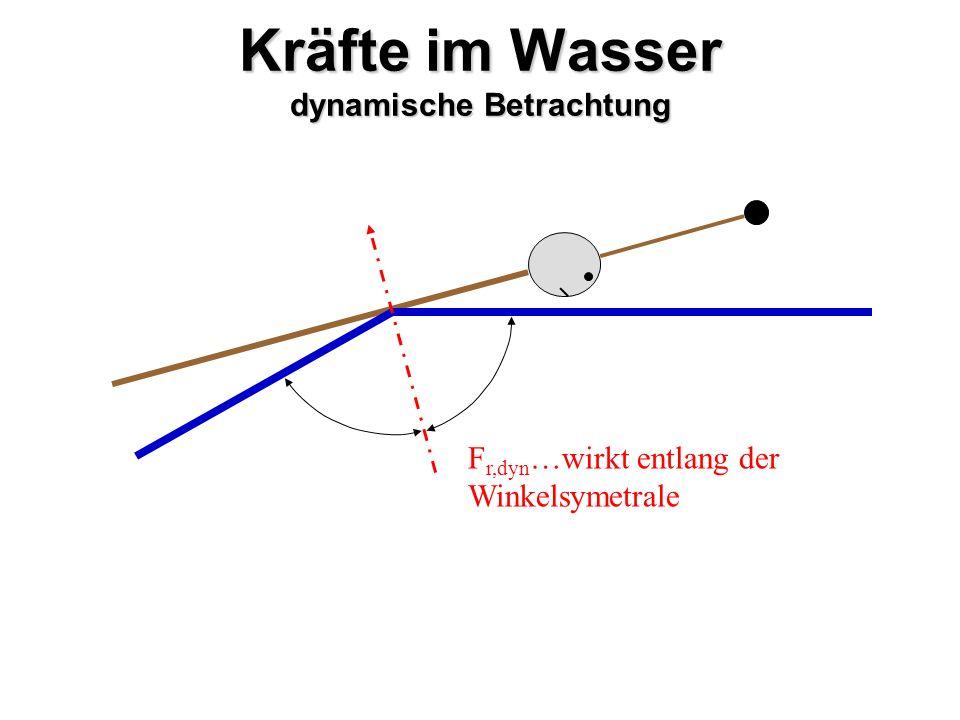 Kräfte im Wasser dynamische Betrachtung F r,dyn …wirkt entlang der Winkelsymetrale