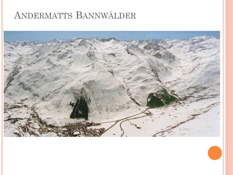 A NDERMATTS B ANNWÄLDER