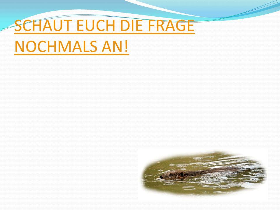SCHAUT EUCH DIE FRAGE NOCHMALS AN!