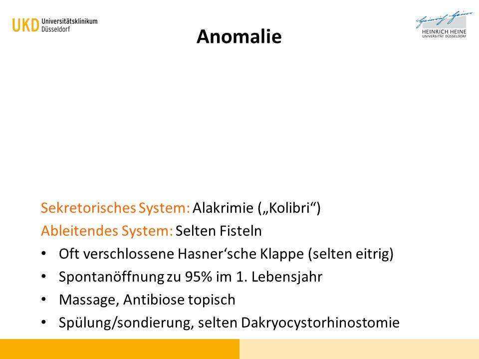 Sekretorisches System: Alakrimie (Kolibri) Ableitendes System: Selten Fisteln Oft verschlossene Hasnersche Klappe (selten eitrig) Spontanöffnung zu 95