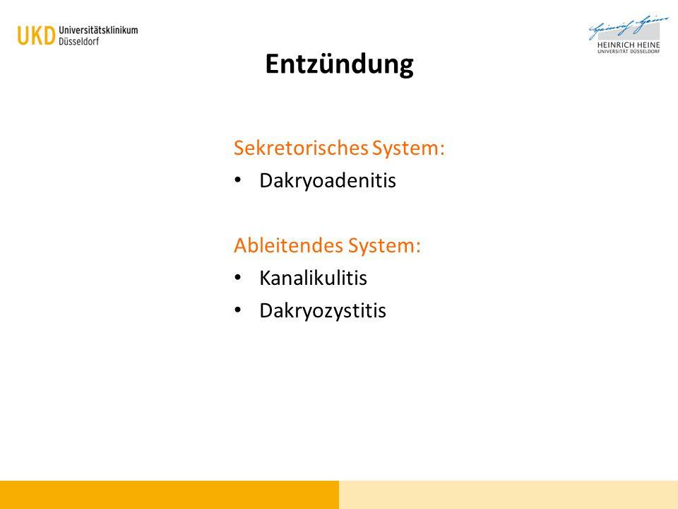 Sekretorisches System: Dakryoadenitis Ableitendes System: Kanalikulitis Dakryozystitis