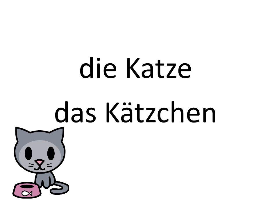 die Katze das Kätzchen