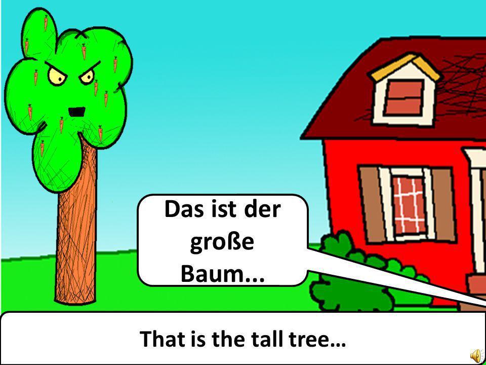 Das ist der große Baum... That is the tall tree…