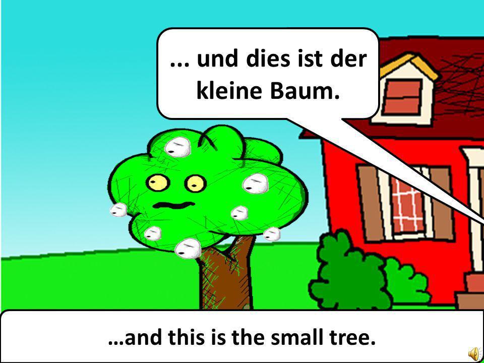 …and this is the small tree.... und dies ist der kleine Baum.