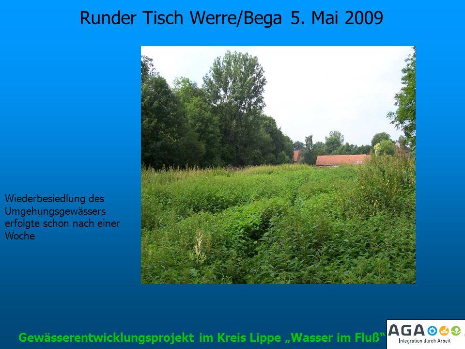 Runder Tisch Werre/Bega 5. Mai 2009 Gewässerentwicklungsprojekt im Kreis Lippe Wasser im Fluß Wiederbesiedlung des Umgehungsgewässers erfolgte schon n