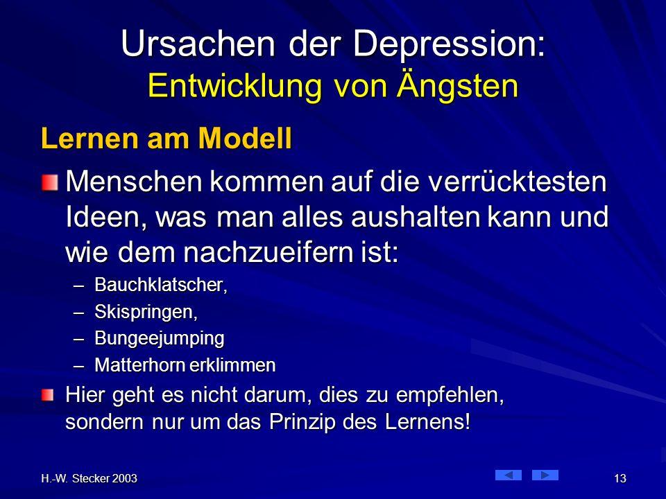 H.-W. Stecker 2003 13 Ursachen der Depression: Entwicklung von Ängsten Lernen am Modell Menschen kommen auf die verrücktesten Ideen, was man alles aus