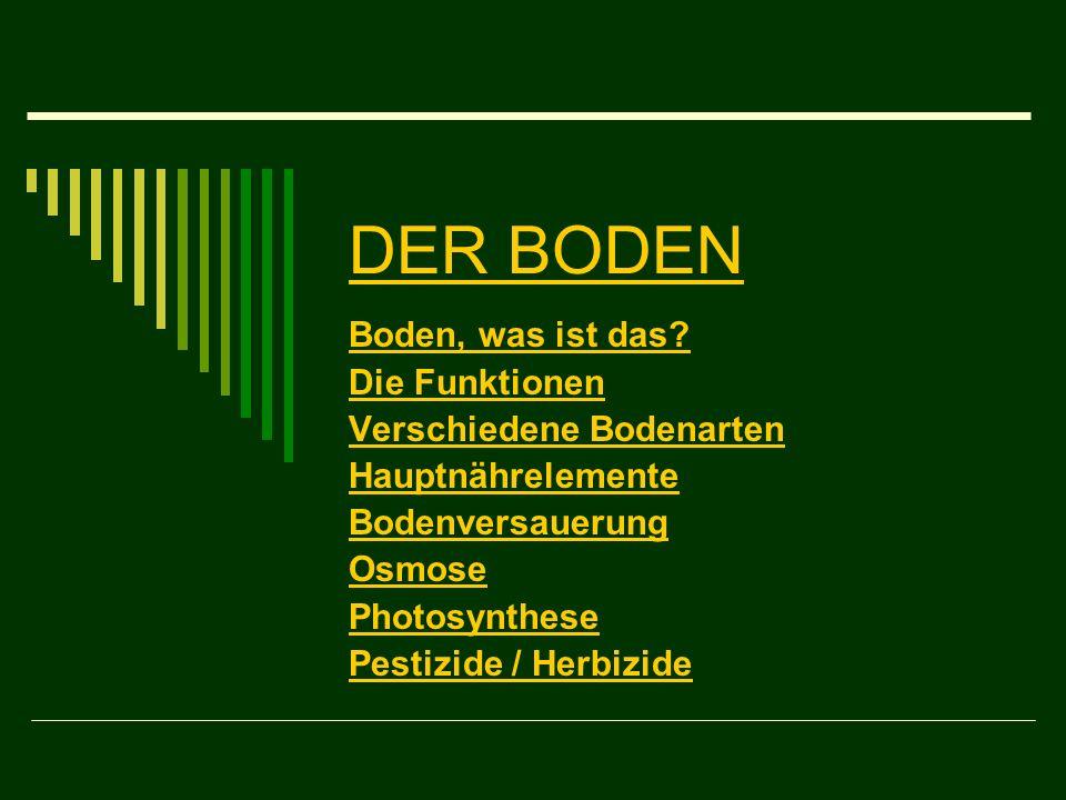 DER BODEN Boden, was ist das? Die Funktionen Verschiedene Bodenarten Hauptnährelemente Bodenversauerung Osmose Photosynthese Pestizide / Herbizide