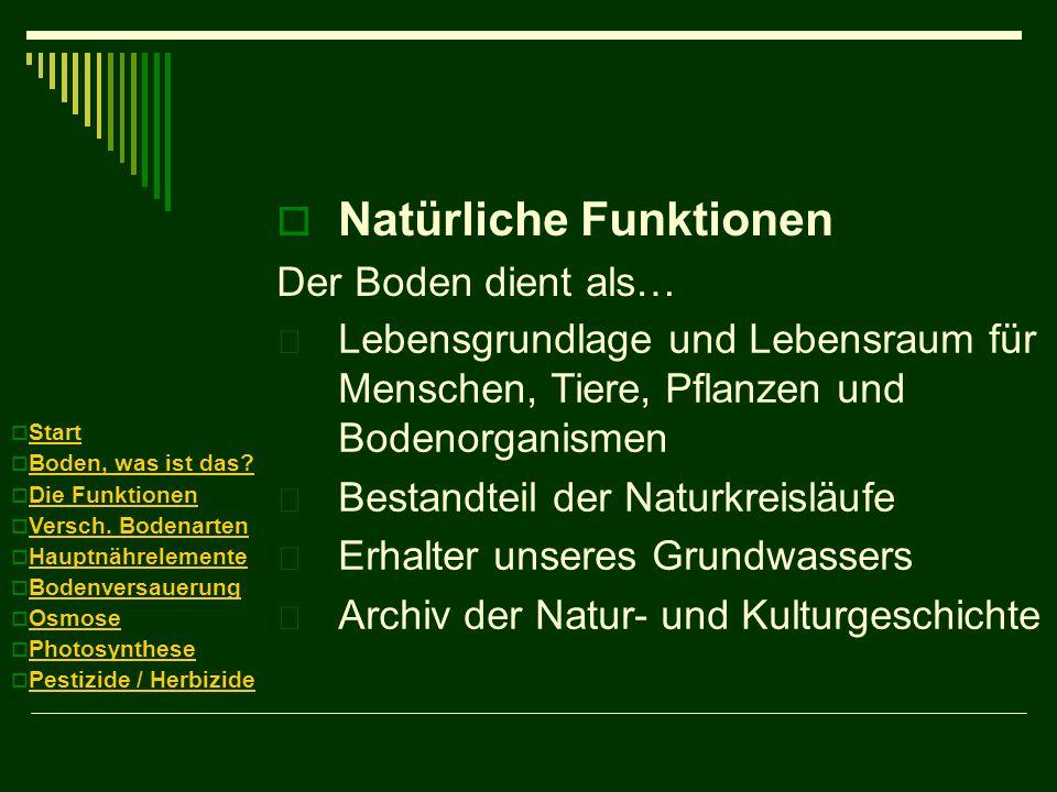 Natürliche Funktionen Der Boden dient als…  Lebensgrundlage und Lebensraum für Menschen, Tiere, Pflanzen und Bodenorganismen  Bestandteil der Naturk