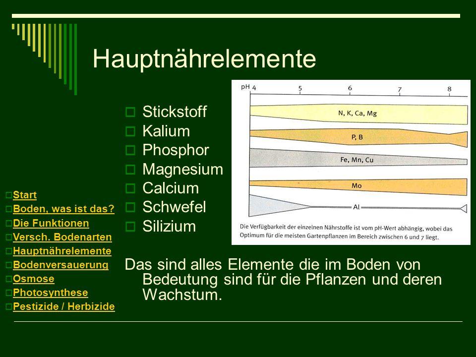 Hauptnährelemente Stickstoff Kalium Phosphor Magnesium Calcium Schwefel Silizium Das sind alles Elemente die im Boden von Bedeutung sind für die Pflan