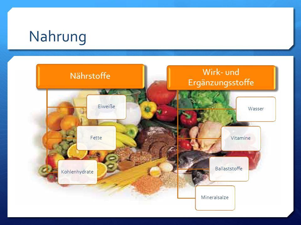 Nahrung Nährstoffe EiweißeFetteKohlenhydrate Wirk- und Ergänzungsstoffe WasserVitamineBallaststoffeMineralsalze