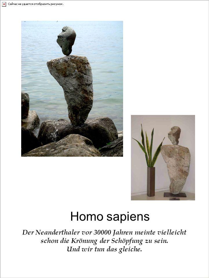 Homo sapiens Der Neanderthaler vor 30000 Jahren meinte vielleicht schon die Krönung der Schöpfung zu sein.