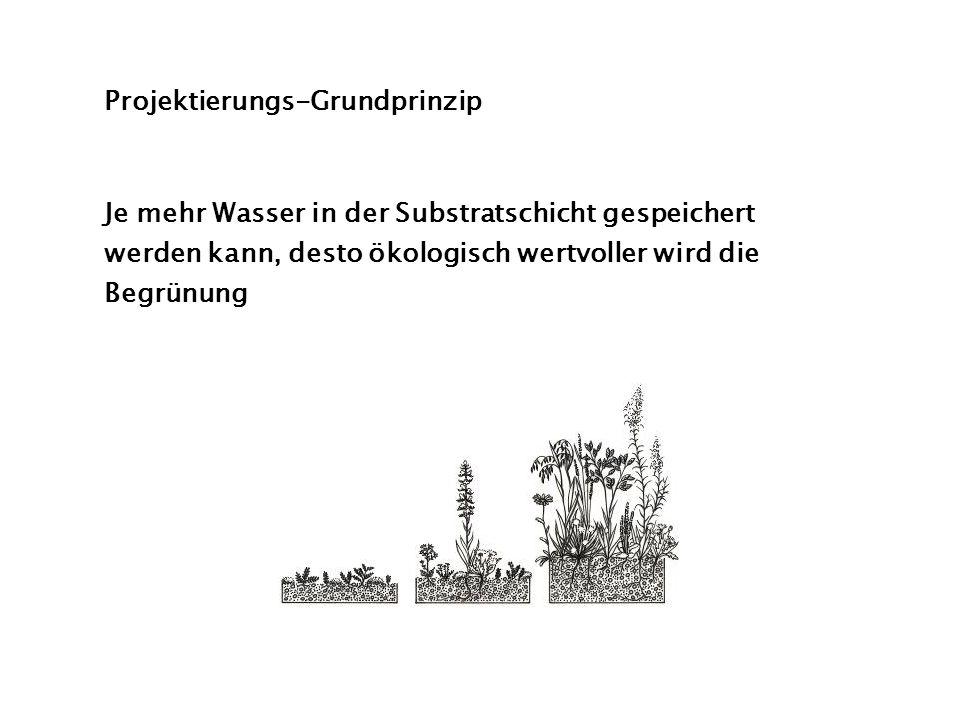 Projektierungs-Grundprinzip Je mehr Wasser in der Substratschicht gespeichert werden kann, desto ökologisch wertvoller wird die Begrünung