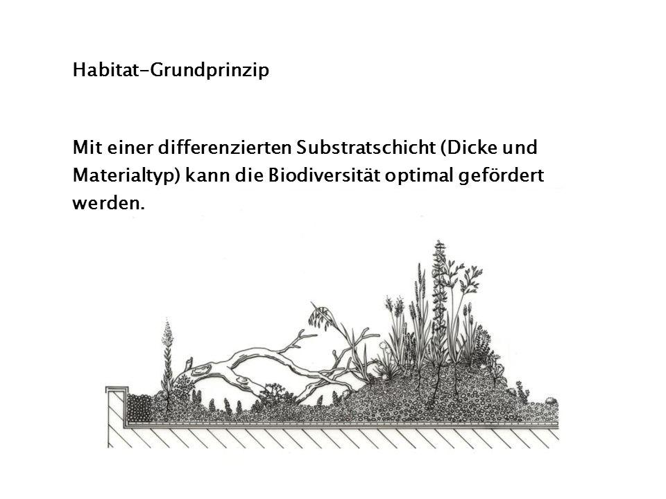 Habitat-Grundprinzip Mit einer differenzierten Substratschicht (Dicke und Materialtyp) kann die Biodiversität optimal gefördert werden.