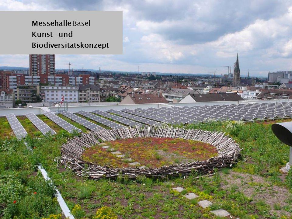 Messehalle Basel Kunst- und Biodiversitätskonzept