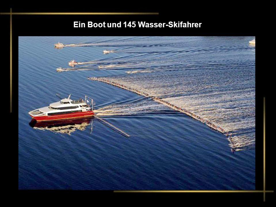 Inzwischen in der Schweiz :Genfersee 2011-12 Winter