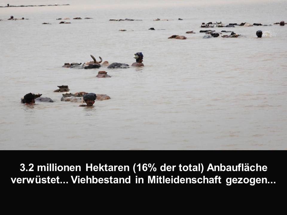 3.2 millionen Hektaren (16% der total) Anbaufläche verwüstet...
