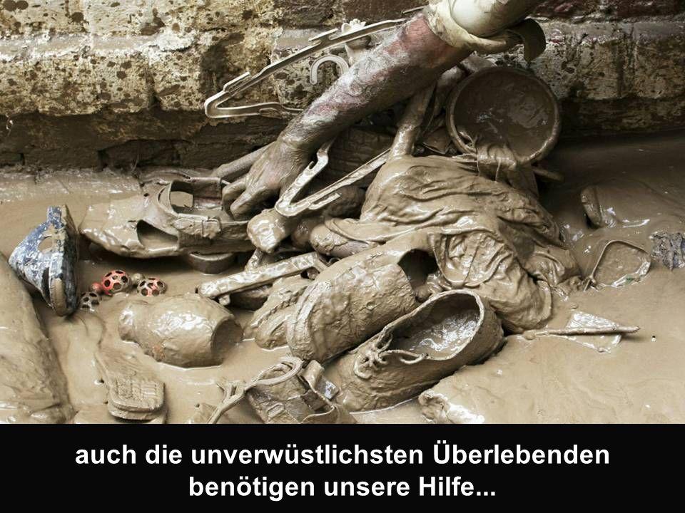 auch die unverwüstlichsten Überlebenden benötigen unsere Hilfe...