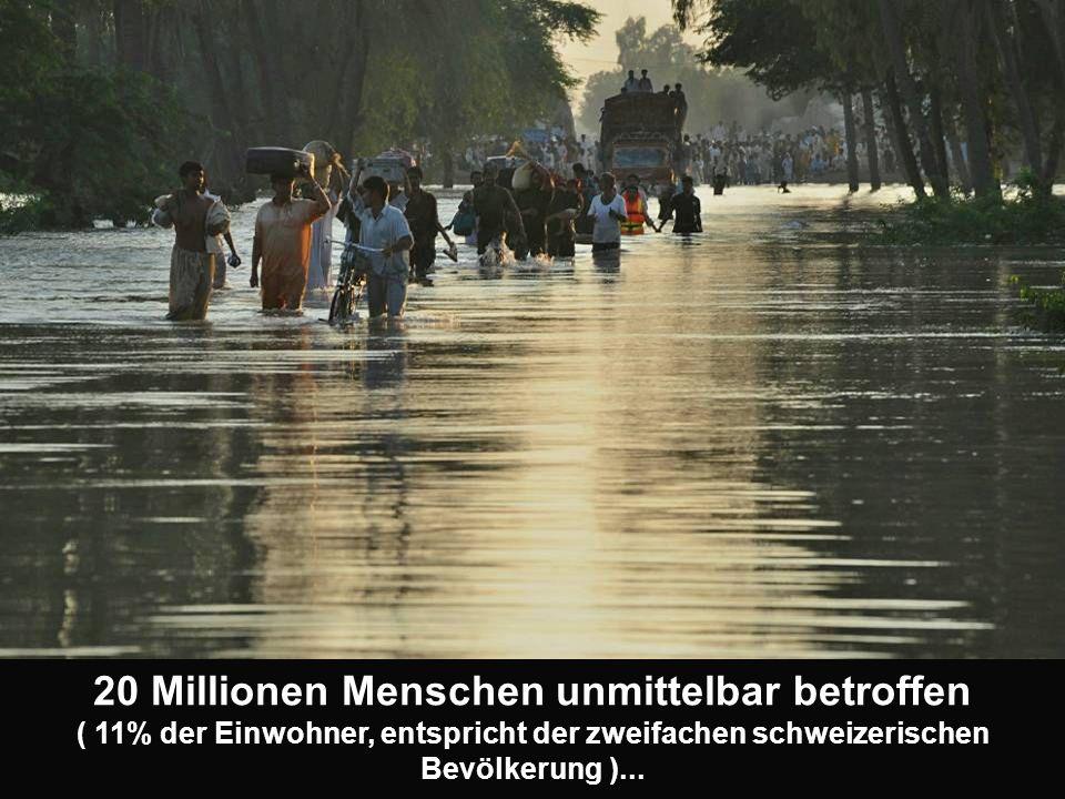 20 Millionen Menschen unmittelbar betroffen ( 11% der Einwohner, entspricht der zweifachen schweizerischen Bevölkerung )...