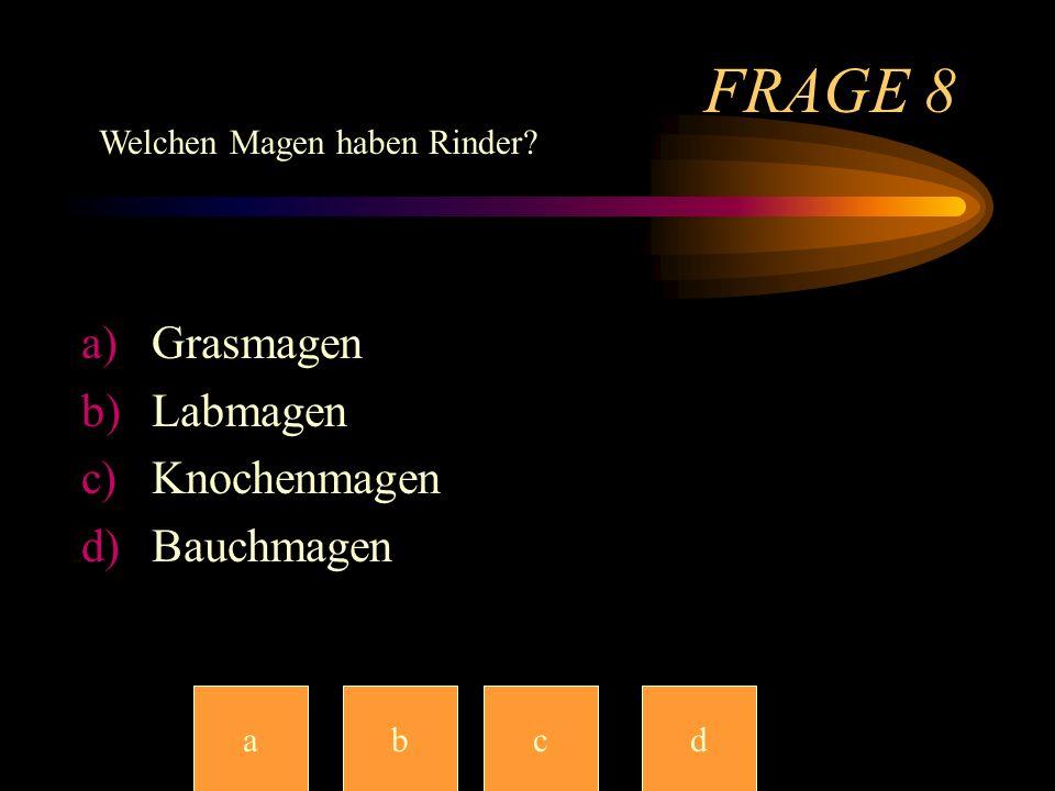 FRAGE7 a)Würstchen b)Gras c)Pommes d)Kaugummi abccd Was fressen Pferde?
