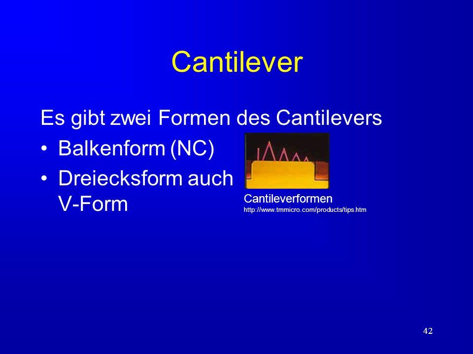 42 Cantilever Es gibt zwei Formen des Cantilevers Balkenform (NC) Dreiecksform auch V-Form Cantileverformen http://www.tmmicro.com/products/tips.htm