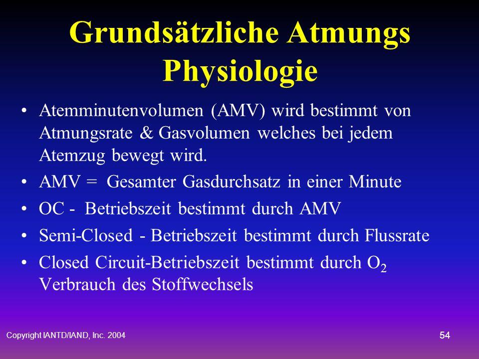 Copyright IANTD/IAND, Inc. 2004 53 Grundsätzliche Atmungs- Physiologie 21% O 2 in Luft auf Meereshöhe 1/4 bis 1/3 wird im Blut absorbiert 80-82% wird
