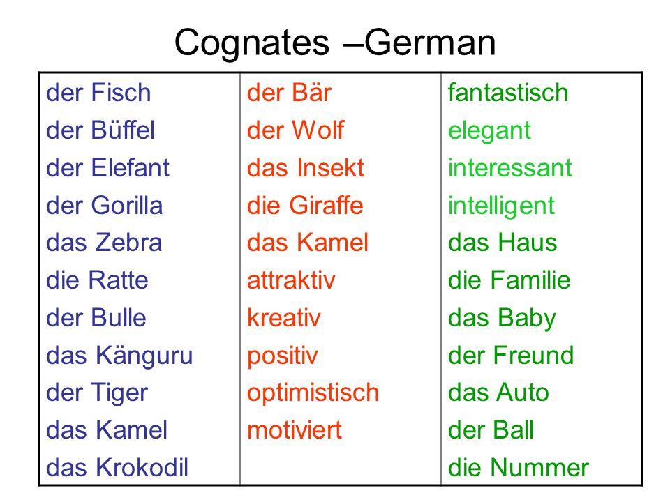 Cognates –German der Fisch der Büffel der Elefant der Gorilla das Zebra die Ratte der Bulle das Känguru der Tiger das Kamel das Krokodil der Bär der W