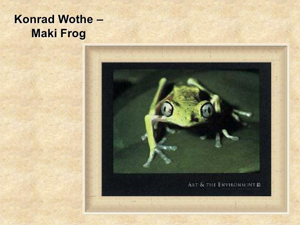 Konrad Wothe – Maki Frog