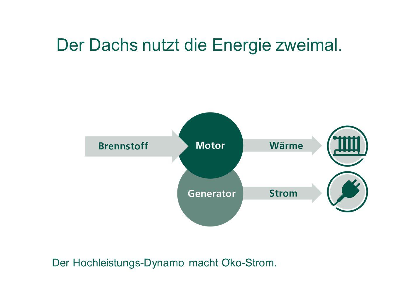 Der Dachs nutzt die Energie zweimal. Der Hochleistungs-Dynamo macht O ̈ ko-Strom.