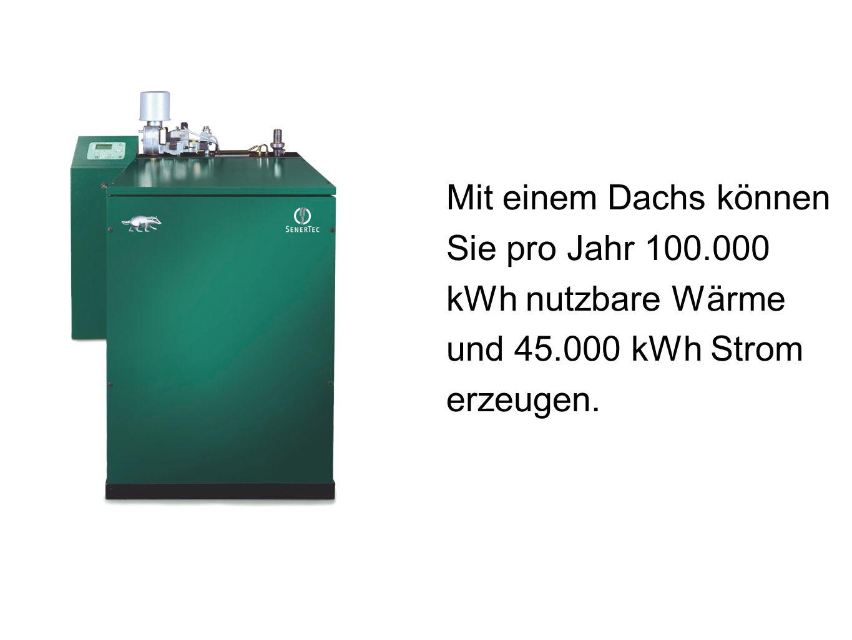 Mit einem Dachs können Sie pro Jahr 100.000 kWh nutzbare Wärme und 45.000 kWh Strom erzeugen.