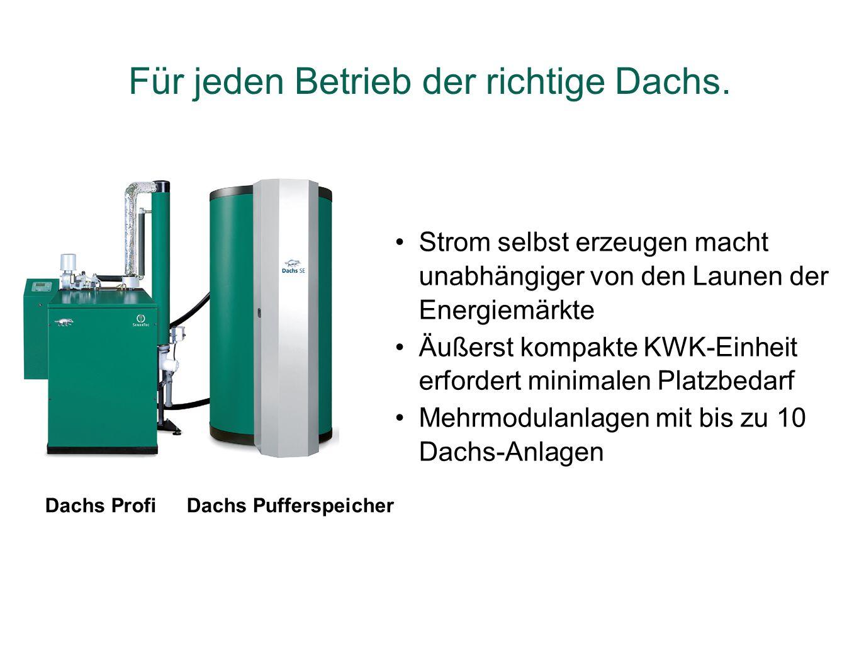Dachs ProfiDachs Pufferspeicher Strom selbst erzeugen macht unabhängiger von den Launen der Energiemärkte Äußerst kompakte KWK-Einheit erfordert minim