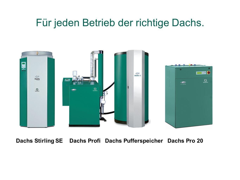 Dachs Stirling SEDachs ProfiDachs PufferspeicherDachs Pro 20 Für jeden Betrieb der richtige Dachs.