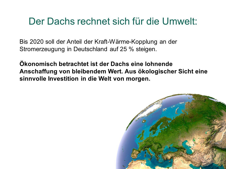 Der Dachs rechnet sich für die Umwelt: Bis 2020 soll der Anteil der Kraft-Wärme-Kopplung an der Stromerzeugung in Deutschland auf 25 % steigen. Ökonom