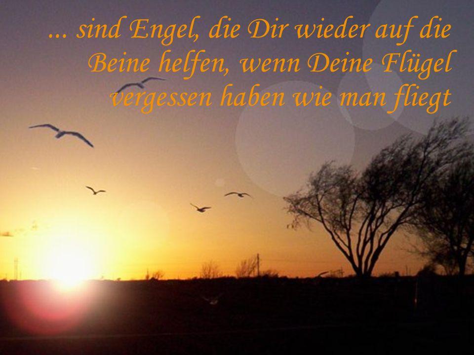 ... sind Engel, die Dir wieder auf die Beine helfen, wenn Deine Flügel vergessen haben wie man fliegt