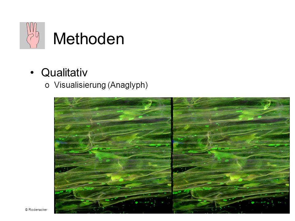 © Rodenacker Methoden Qualitativ oVisualisierung (Anaglyph)