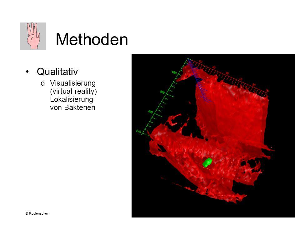 © Rodenacker Methoden Qualitativ oVisualisierung (virtual reality) Lokalisierung von Bakterien