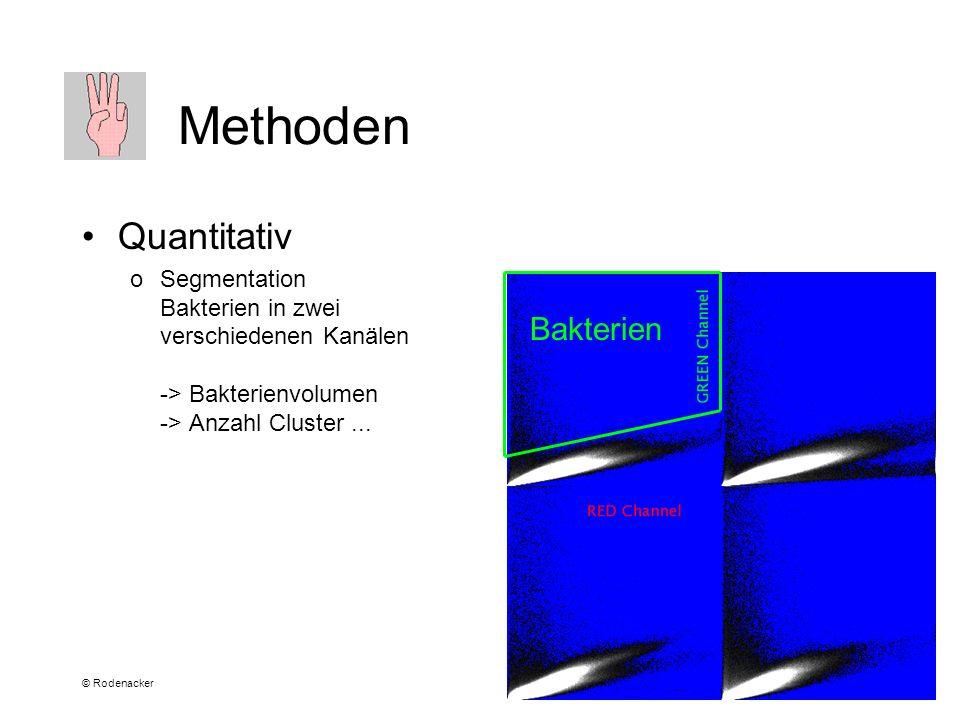 © Rodenacker Methoden Quantitativ oSegmentation Bakterien in zwei verschiedenen Kanälen -> Bakterienvolumen -> Anzahl Cluster...