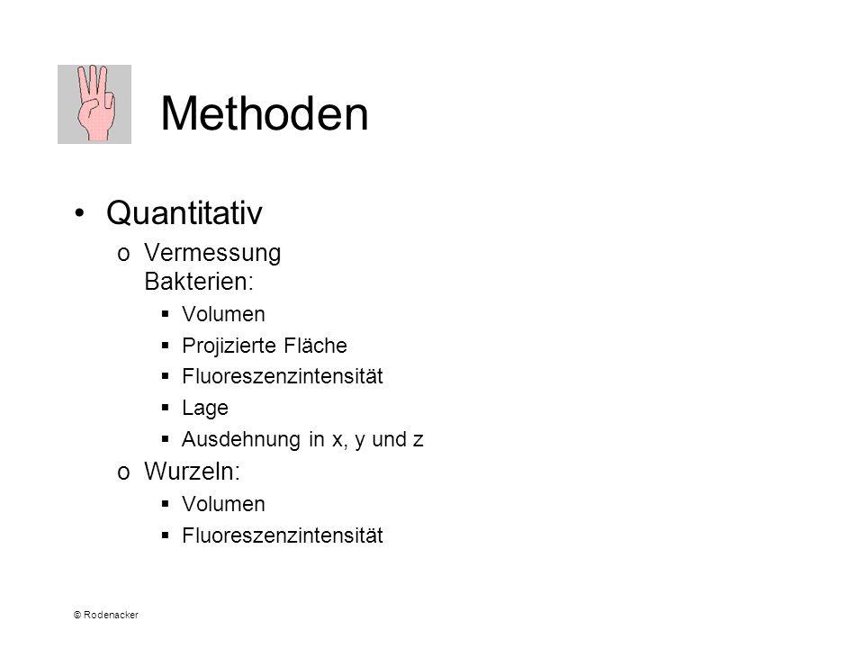 © Rodenacker Methoden Quantitativ oVermessung Bakterien: Volumen Projizierte Fläche Fluoreszenzintensität Lage Ausdehnung in x, y und z oWurzeln: Volumen Fluoreszenzintensität