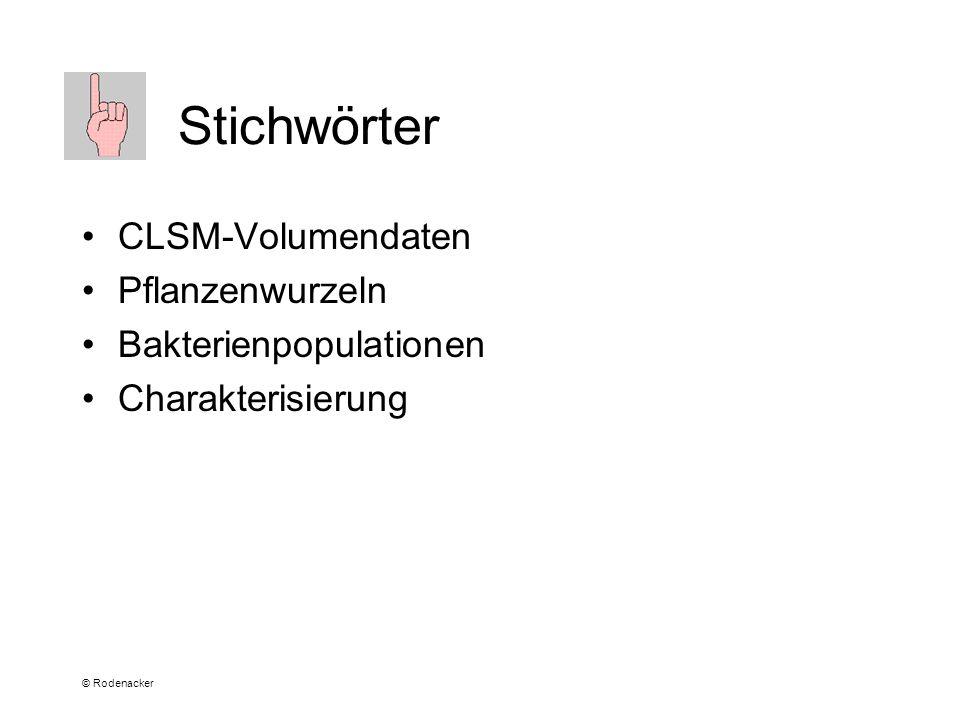 © Rodenacker Stichwörter CLSM-Volumendaten Pflanzenwurzeln Bakterienpopulationen Charakterisierung