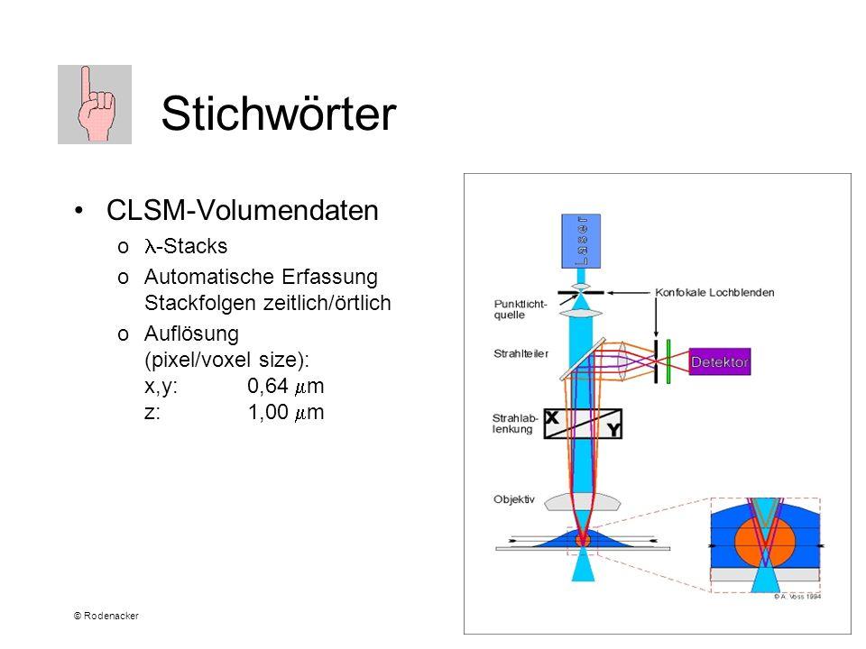 © Rodenacker Stichwörter CLSM-Volumendaten o -Stacks oAutomatische Erfassung Stackfolgen zeitlich/örtlich oAuflösung (pixel/voxel size): x,y:0,64 m z: 1,00 m