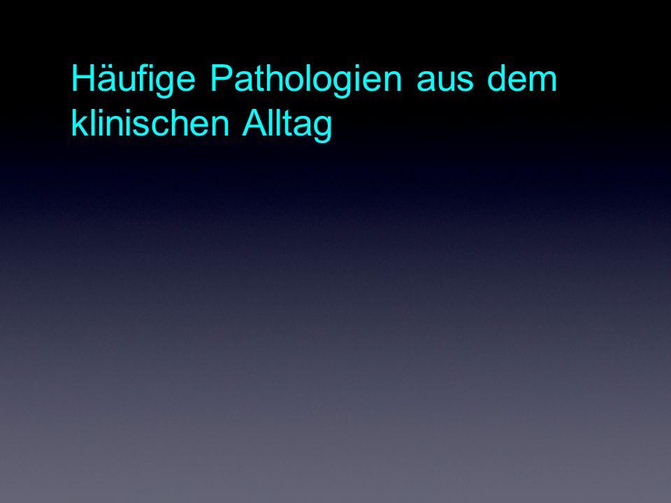Häufige Pathologien aus dem klinischen Alltag