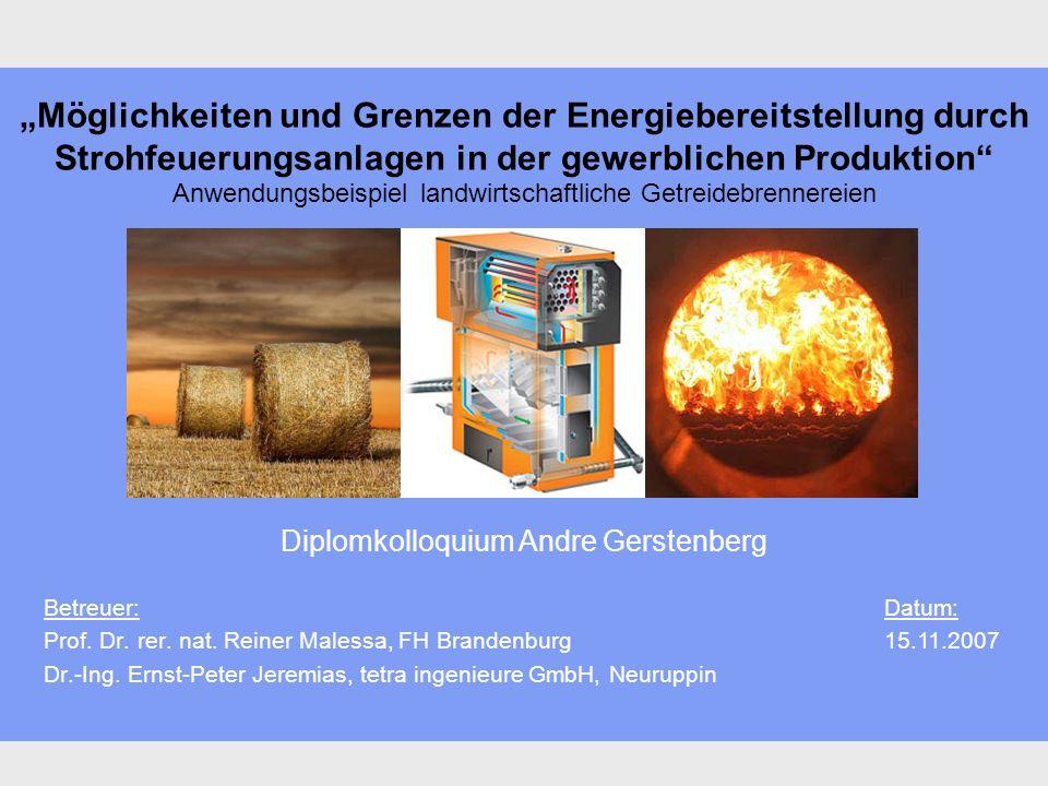 Möglichkeiten und Grenzen der Energiebereitstellung durch Strohfeuerungsanlagen in der gewerblichen Produktion Anwendungsbeispiel landwirtschaftliche