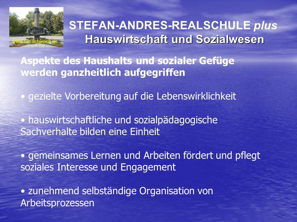Hauswirtschaft und Sozialwesen STEFAN-ANDRES-REALSCHULE plus Hauswirtschaft und Sozialwesen www.saz-schweich.de Aspekte des Haushalts und sozialer Gef