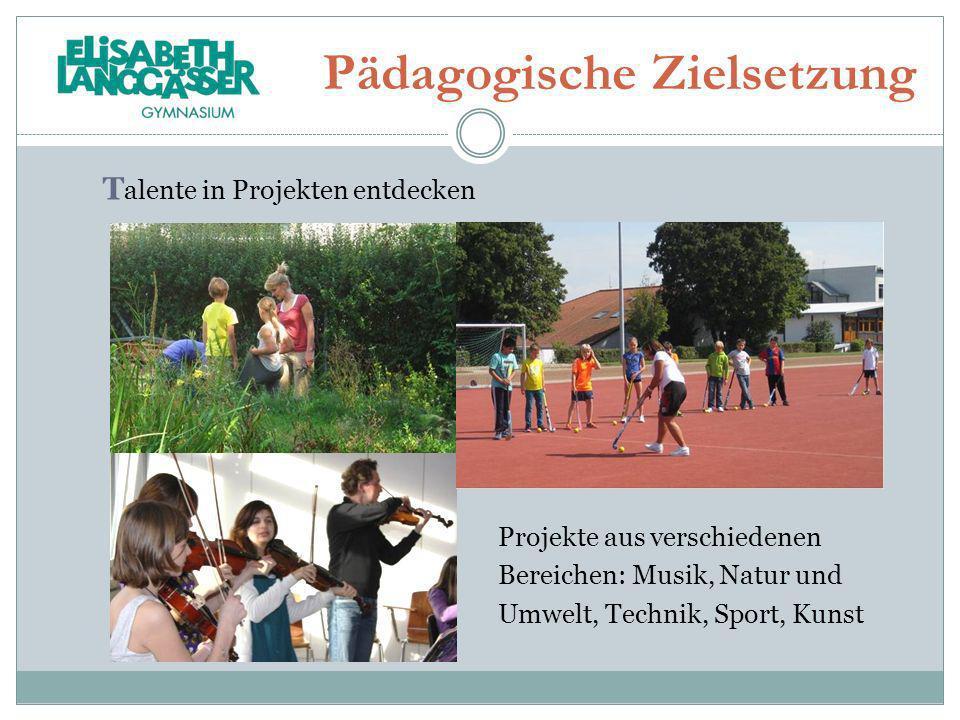 T alente in Projekten entdecken Projekte aus verschiedenen Bereichen: Musik, Natur und Umwelt, Technik, Sport, Kunst Pädagogische Zielsetzung